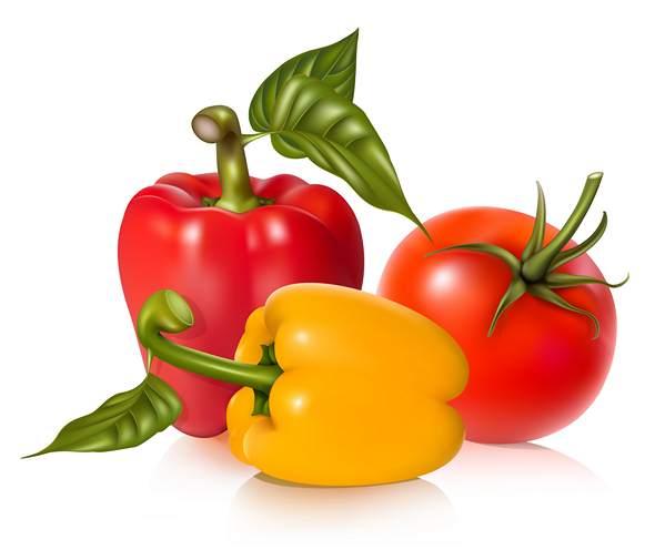 سبزی میوه و تره بار